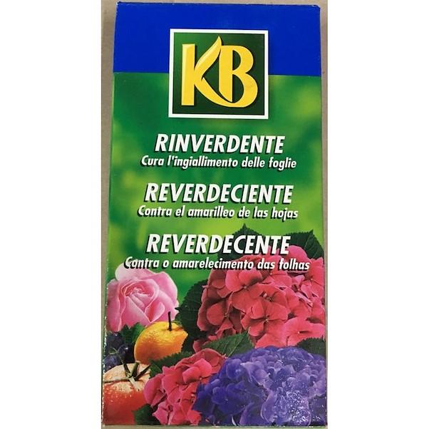 REVERDEJANTE KB ANTI-CLOROSE 200ML